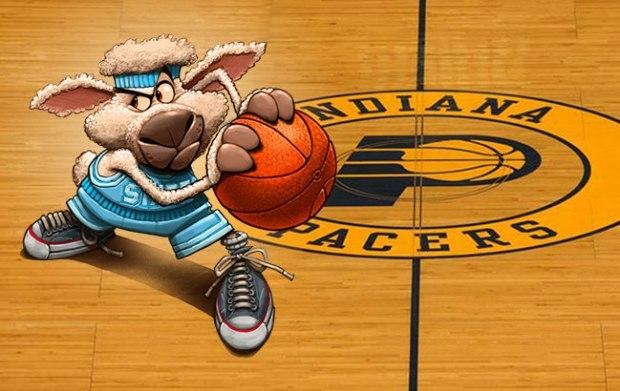 BasketballSheep