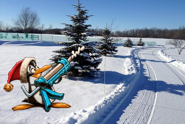 SnowFence4